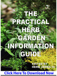 View of Practical Herb Garden Guide