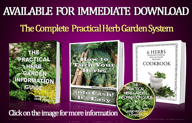 "Image showing 4 of 5 items in ""The Practical Herb Garden System"""